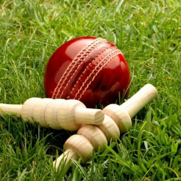 MyTeamBuilding Coverpoint Cricket Bails And Ball